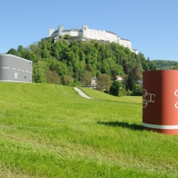 Kunstprojekt Krauthügel 2016 Andreas Slominski, Rüben - Foto: Salzburg Foundation